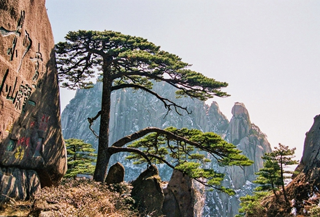 Huangshan Mountain (Yellow Mountain)
